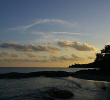 Tropical Sunset by David McMahon