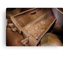 Prehistoric skeletal remains in teak coffin, Thailand Canvas Print