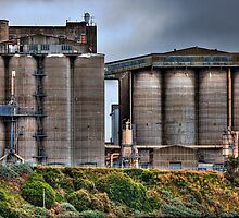 Grain Elevators by Ian Creek