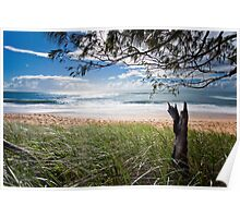 """Early Morning"" Shelly Beach, Caloundra Poster"