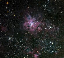 Tarantula Nebula in the Large Magellenic Cloud by Stuart Thomson