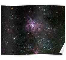 Tarantula Nebula in the Large Magellenic Cloud Poster