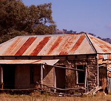 Rusty ol Shack by Sharon Kavanagh