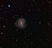 Messier 83, a galaxy in the constellation Hydra by Stuart Thomson