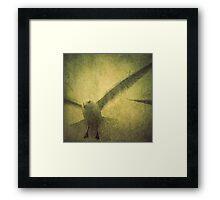AVIAN FLEW Framed Print