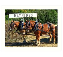 The Hayride Boys Art Print
