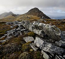 South West Tasmania Mountains by Michael Gay