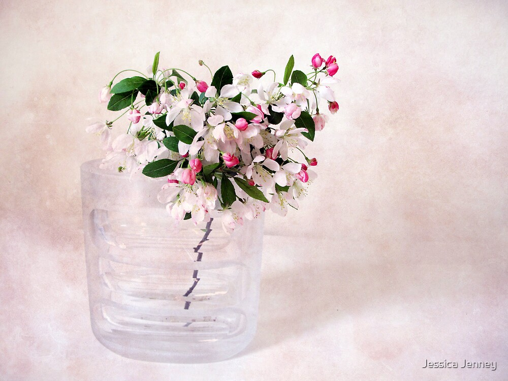 Apple Blossom by Jessica Jenney
