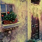 Flower Box Bonnieux, France by Rene Hales