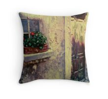 Flower Box Bonnieux, France Throw Pillow