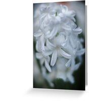 Flowers in Depth 2 Greeting Card