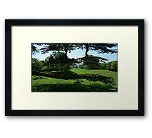 England,s Greenery Framed Print