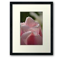 Flowing Petals Framed Print