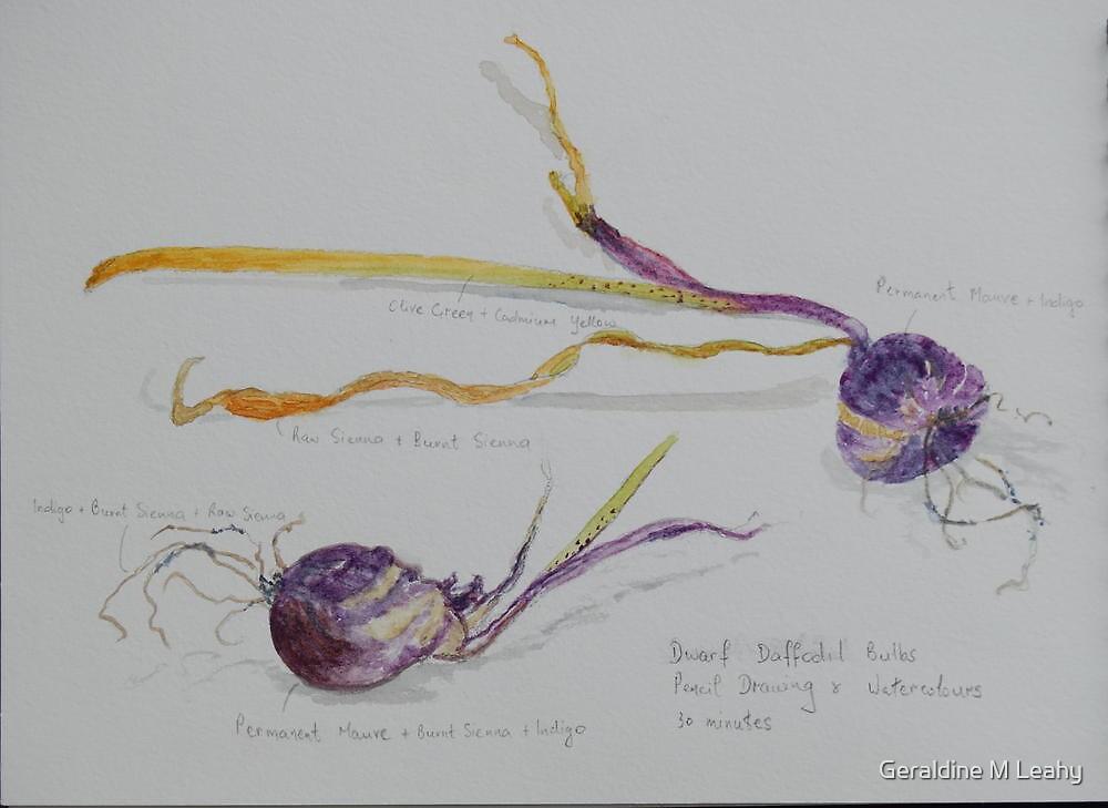 Bulbs by Geraldine M Leahy