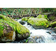 Toorongo Falls Walkway Photographic Print