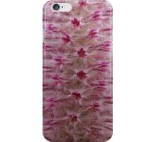 Mulla Mulla Close up iPhone Case/Skin