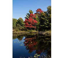 Red and Green - the Arrival of Autumn Photographic Print