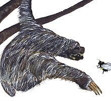 THE SLOTH & THE BUMBLE BEE by Hares & Critters