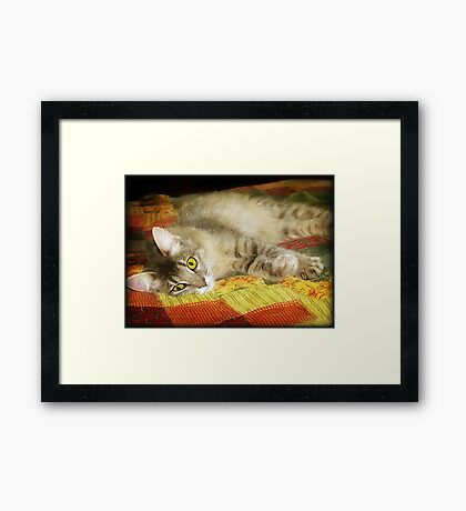 """Sweetie Pie"" Framed Print"