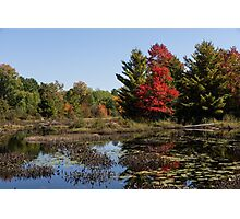 Red Maple - Still Forest Lake in the Fall Photographic Print