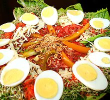 REDREAMING CIRCLE SALAD by REDREAMER