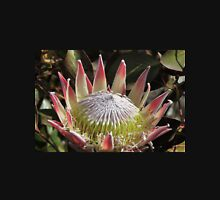 The King Protea (Protea cynaroides) Womens Fitted T-Shirt