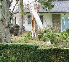 More Damage In Niagara-On-The-Lake by artwhiz47