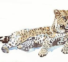 Leopard {Panthera pardus} by Maree Clarkson
