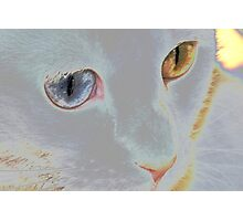 My ethereal delight Photographic Print