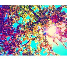 psychedelic sun Photographic Print