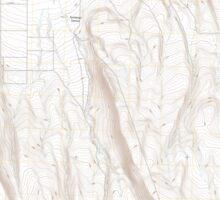 USGS Topo Map Oregon Fandango Canyon 20110829 TM Sticker