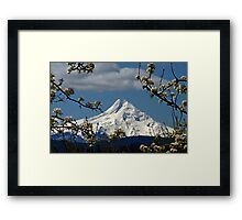 Blossoms On The Hood Framed Print