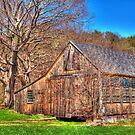 The Rustic Barn by Monica M. Scanlan