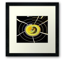 Embryo Framed Print