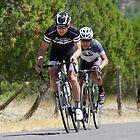 Tour of the Gila  ~ Gila Monster Race 1 by Vicki Pelham