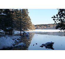 winter # 6 Photographic Print