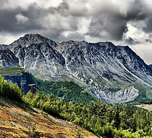 Along the Richardson Hwy, AK by Vickie Emms