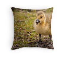 Hello Mister Throw Pillow