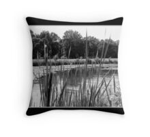 Beaver Island State Park Throw Pillow