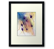 Blackberries (Abstract)  Framed Print