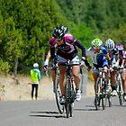 Tour of the Gila ~ Gila Monster Race 3 by Vicki Pelham