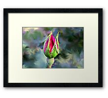 KnockOut Rosebud and Friend Framed Print