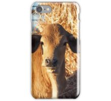Poddy calf iPhone Case/Skin