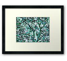 Strange Forest in Springtime Framed Print