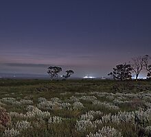 Port Augusta Twilight by PABarrattArt