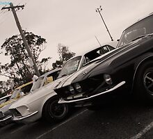 Line of Mustangs by MattMcilwhan