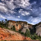 Day At Zion by Cynthia Broomfield