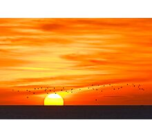 Sunrise From Whitburn Photographic Print