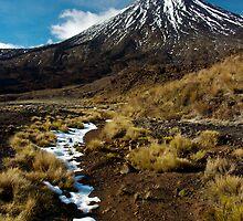 Lingering Snow - Mt Ngauruhoe, New Zealand by Phil McComiskey