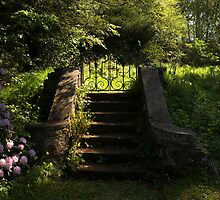 The garden gate by nigelphoto